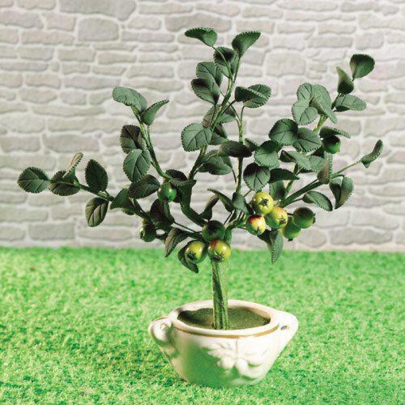 Juicy Apple Tree 150mm