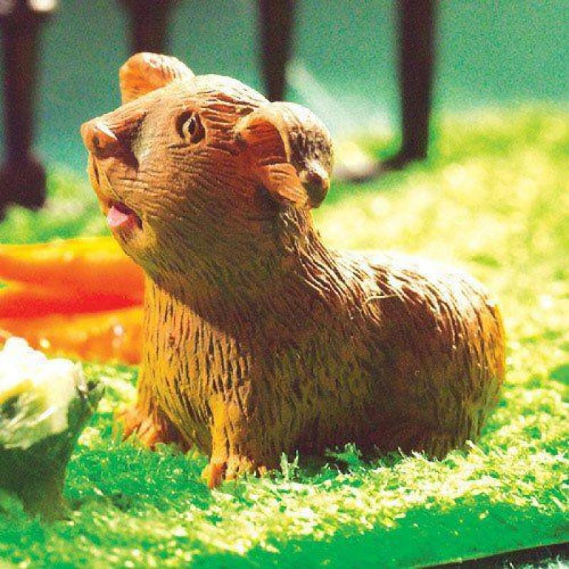 Harriet, the Guinea Pig (PR)