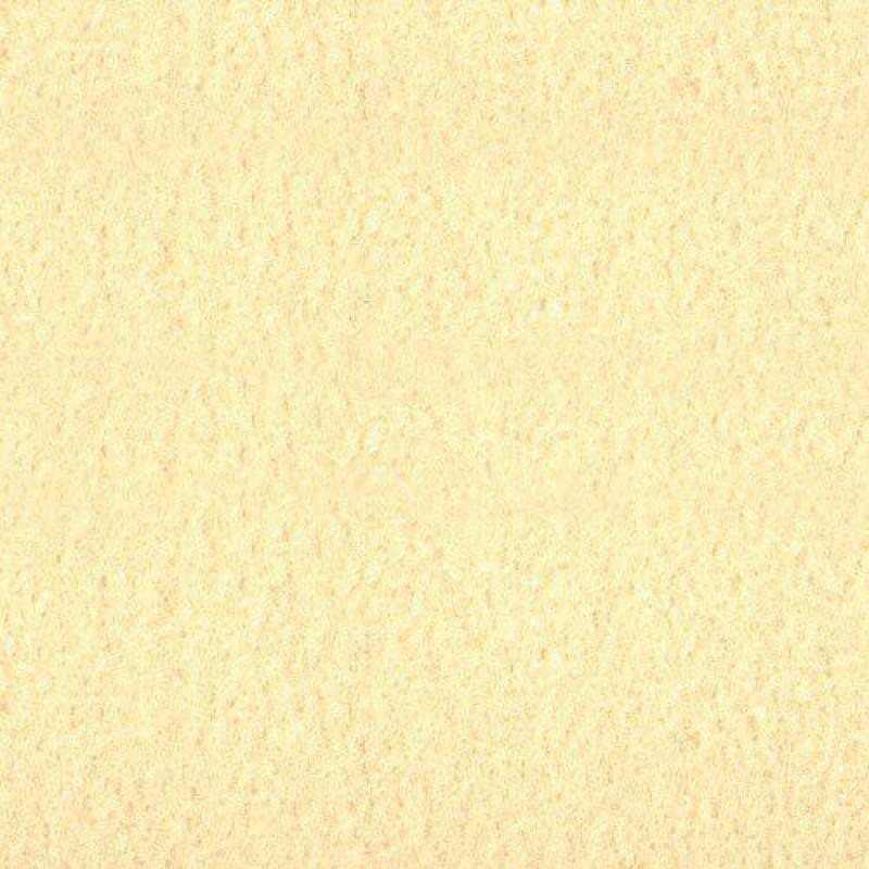 Cream SA Carpet 335 x 500mm