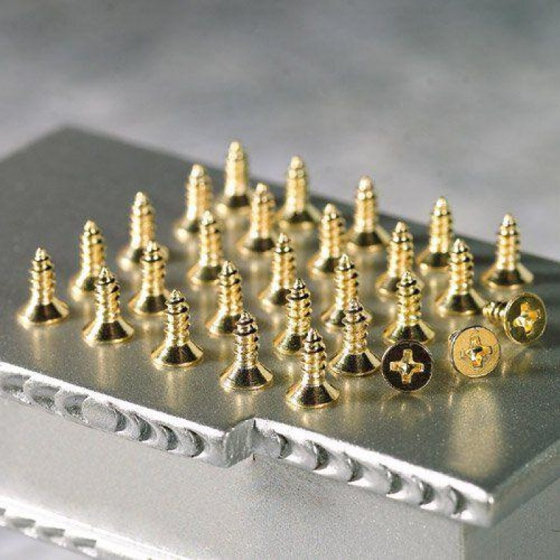 Screws for Cranked Hinges, 28 pieces