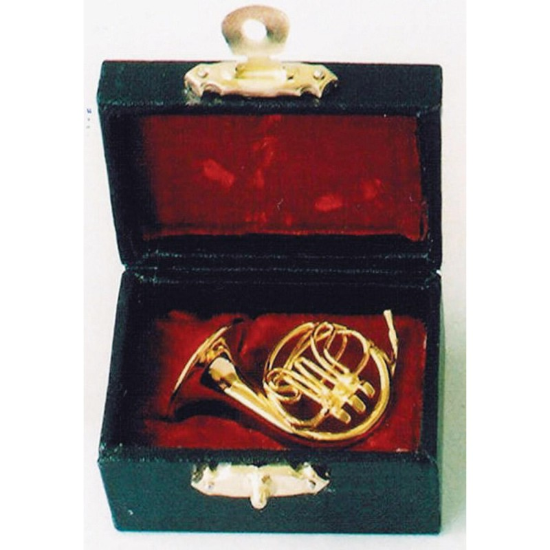 French Horn in Case