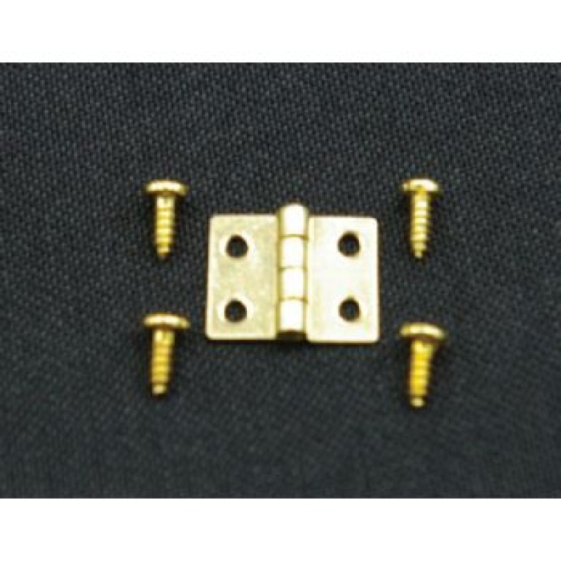 8mm Hinges & Screws, 10 pieces