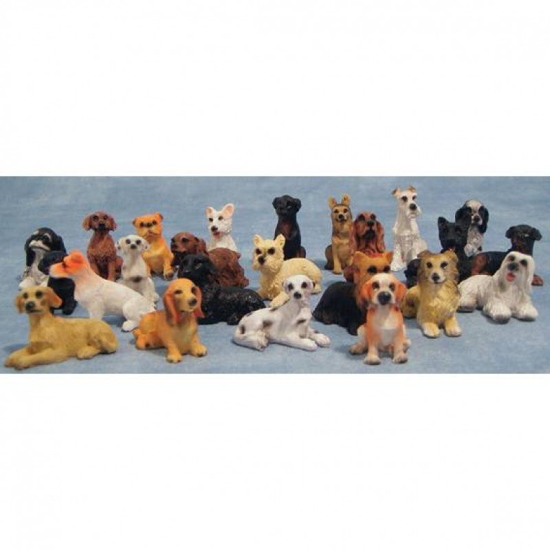 Assorted Mini Dogs 24 pack