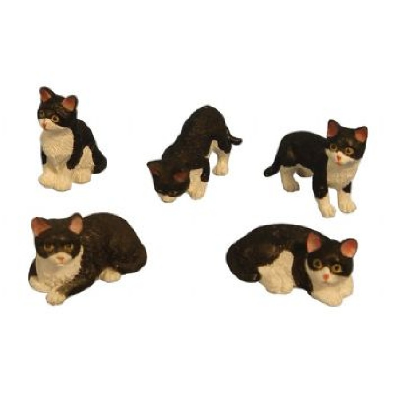 Assorted Black / White Cats, 5 pack