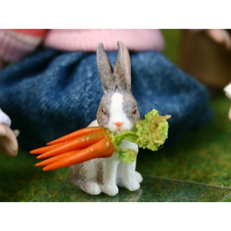 Bunny Rabbit with Carrots