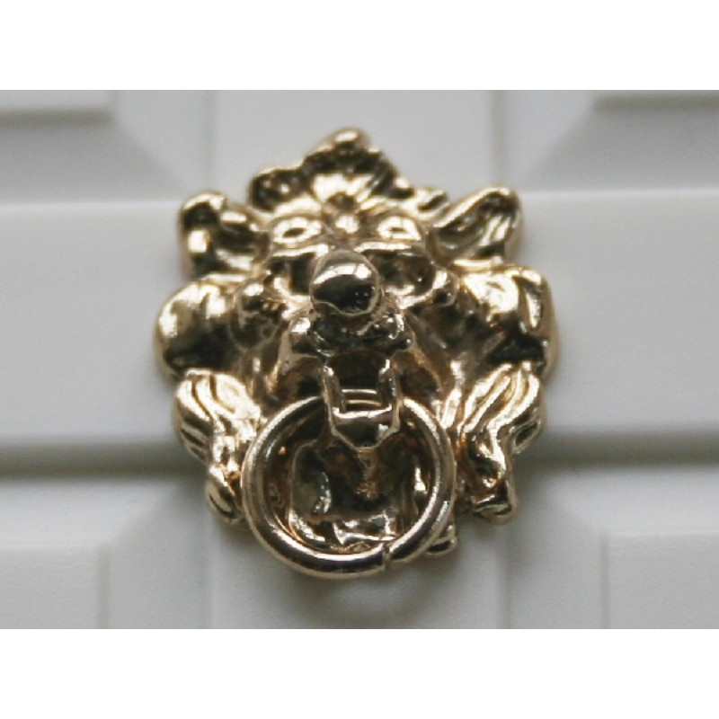 Polished Lion Knocker
