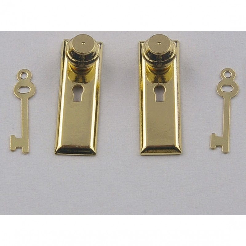 Door Handle plates and keys