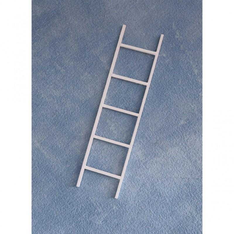 Small White Ladder pk 10