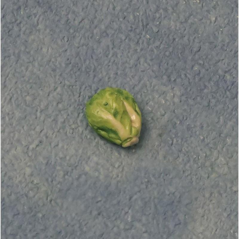 Babettes Miniaturen Savoy Cabbage pk6