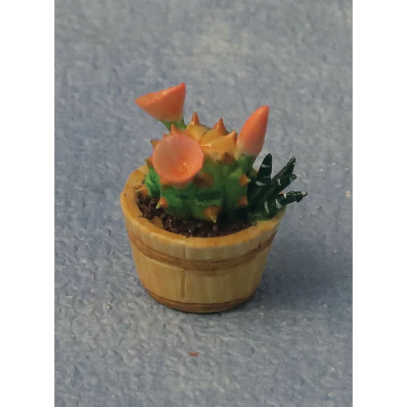 Babettes Miniaturen 3 pc Cactus set