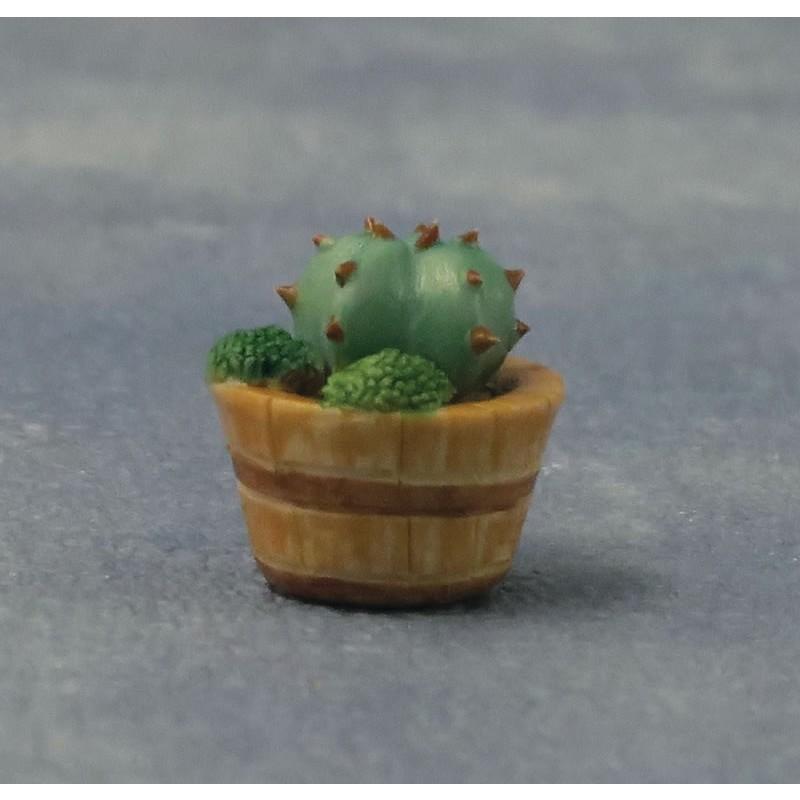 Babettes Miniaturen Cactus 3asst