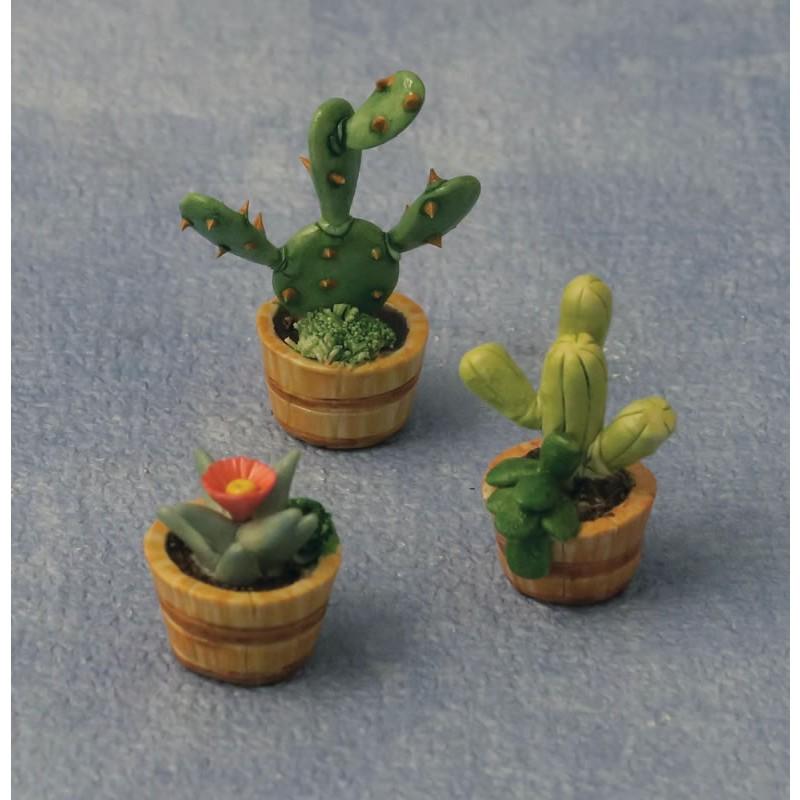 Babettes Miniaturen 3 pc Cactus Set