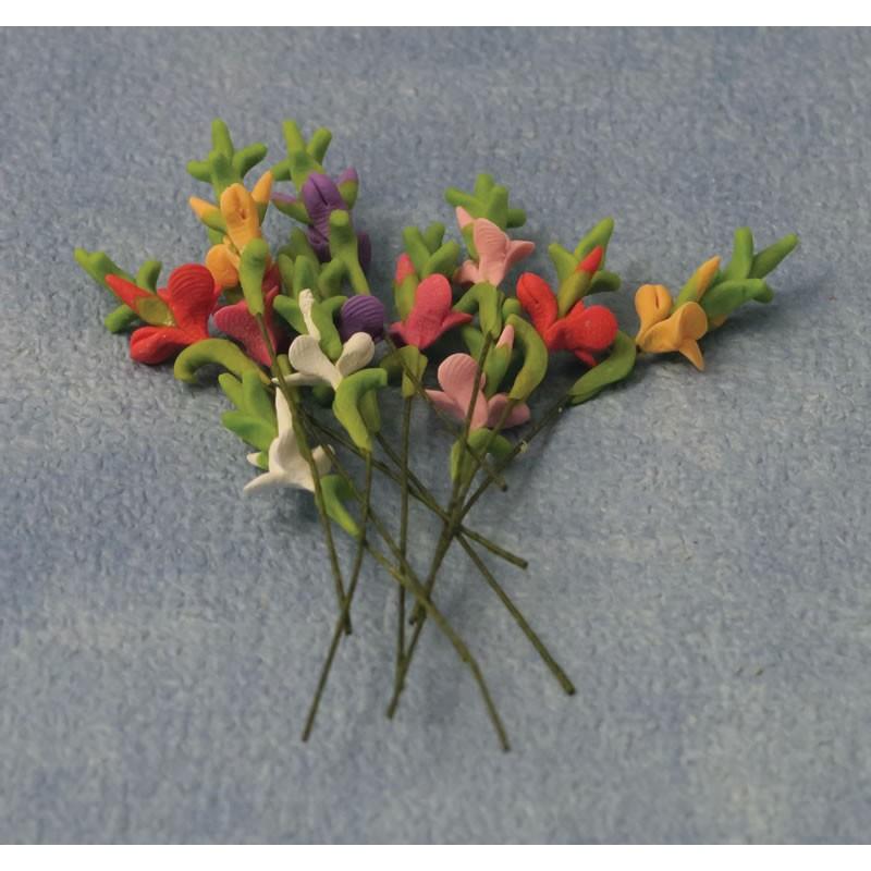 Babettes Miniaturen Gladioli 12 pcs