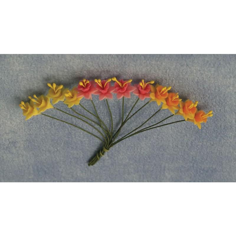 Babettes Miniaturen Daffodills 12pc