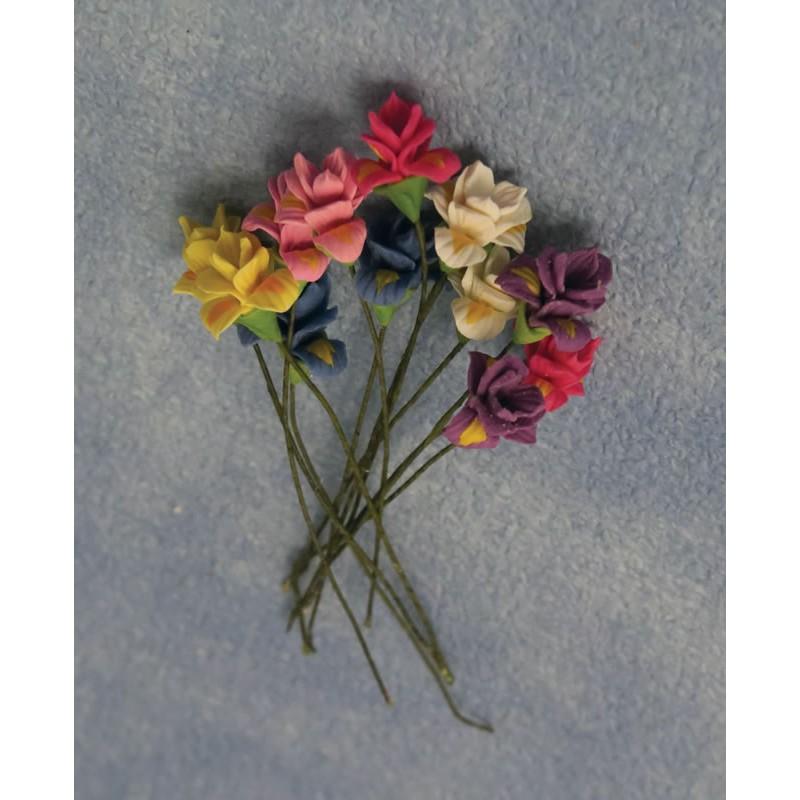 Babettes Miniaturen Iris 12pc