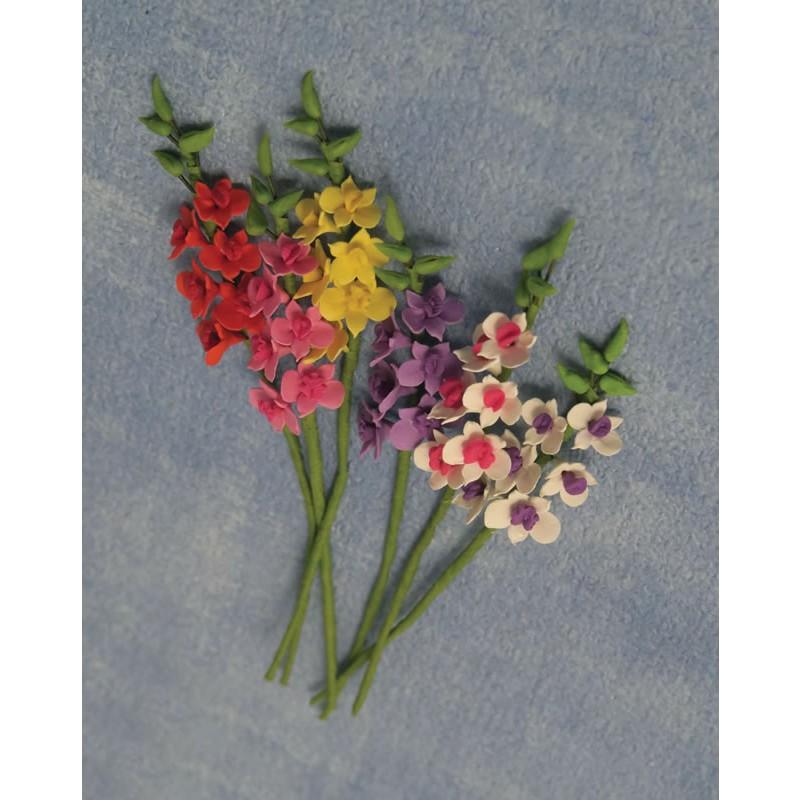 Babettes Miniaturen Gladioli 6 pcs