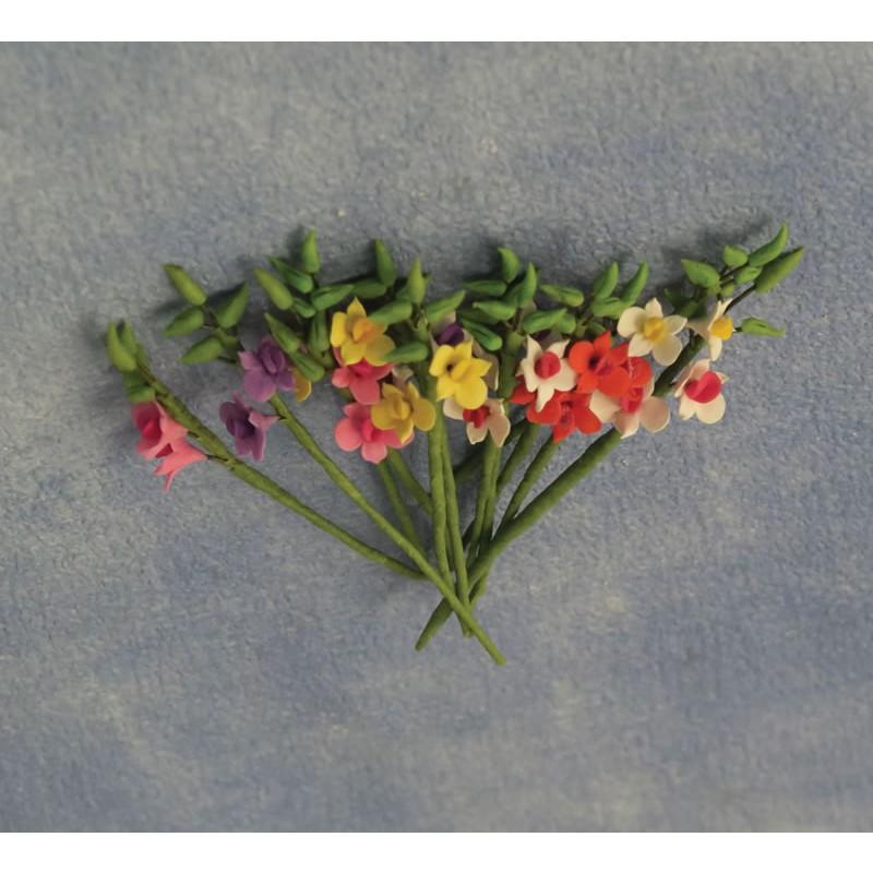 Babettes Miniaturen Small Gladioli 12 pcs