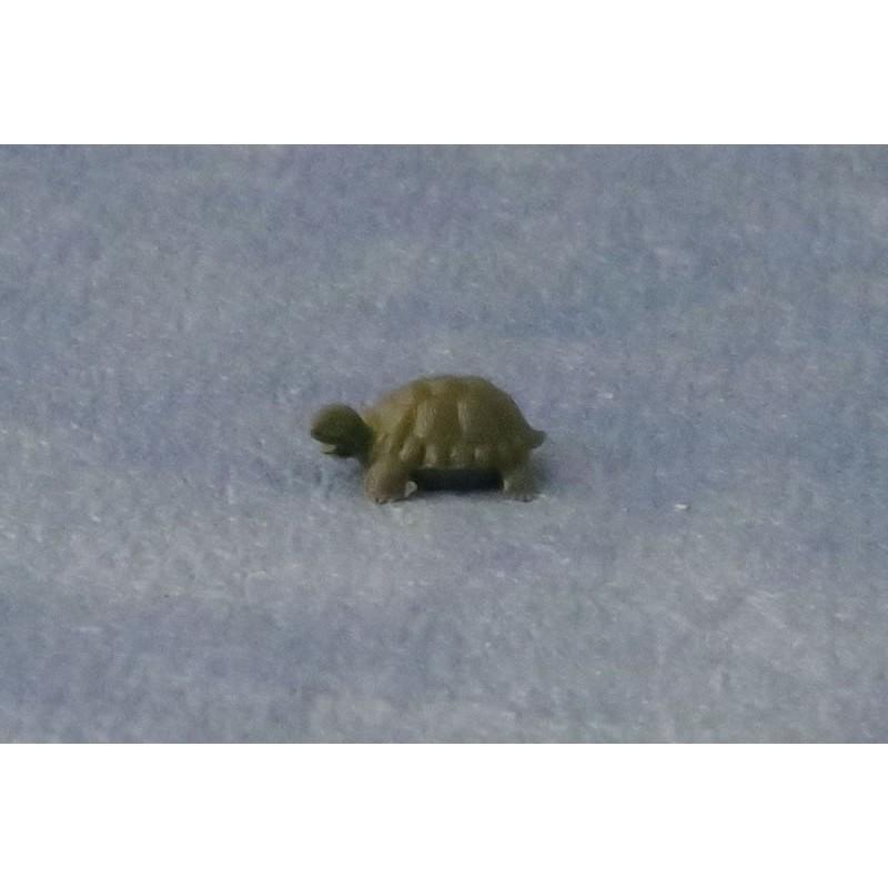 Babettes Miniaturen Small Tortoise pk2
