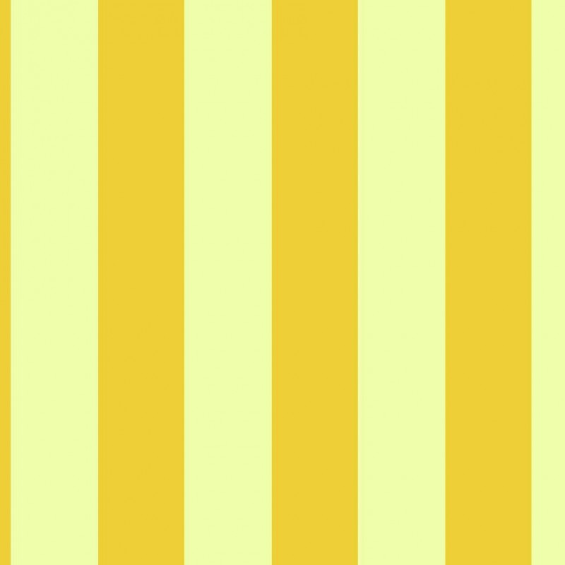 Small Interiors Wide Stripe Yellow