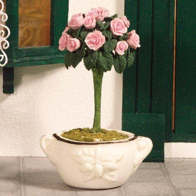 Standard Garden Rose 75mm