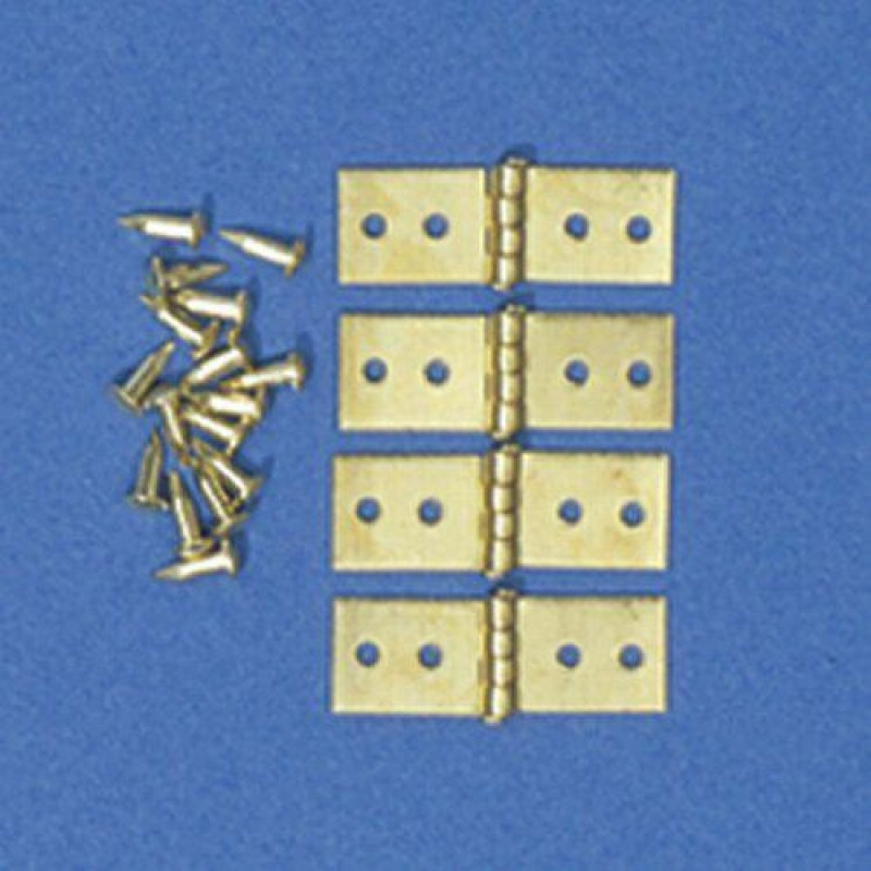 Hinges & Pins, 4 pieces 5 x 15mm