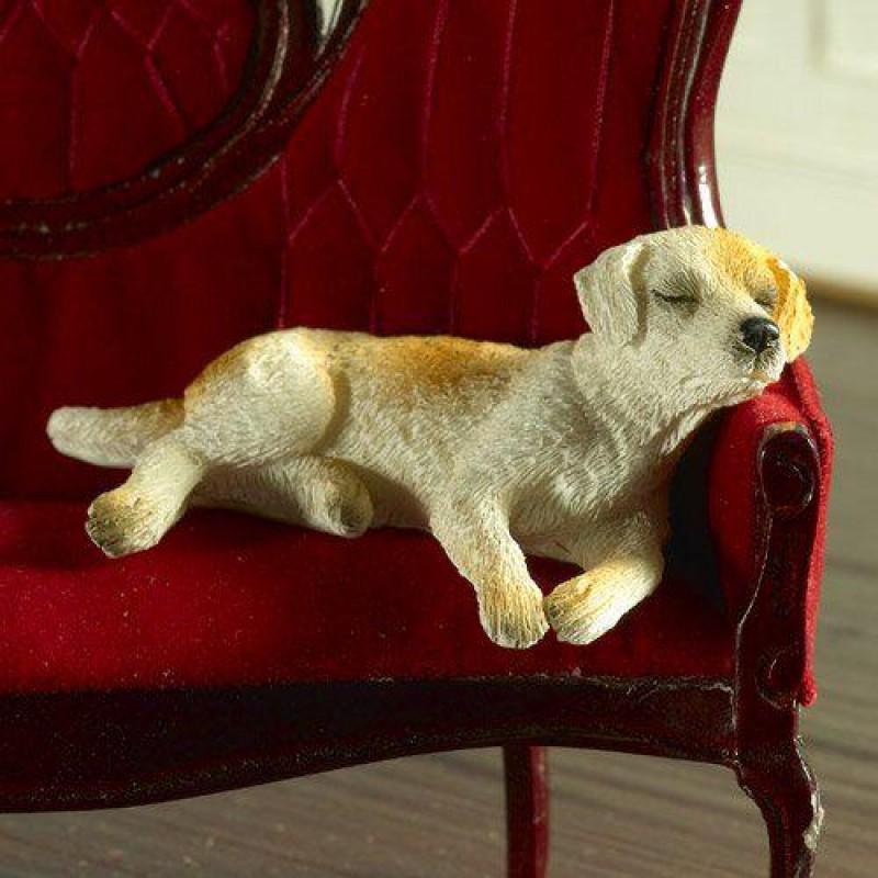 Ben the Sleepy Labrador (PR)