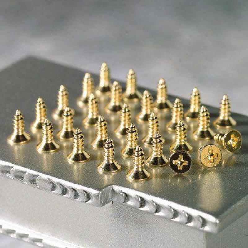 Screws for Cranked Hinges, 28 pieces