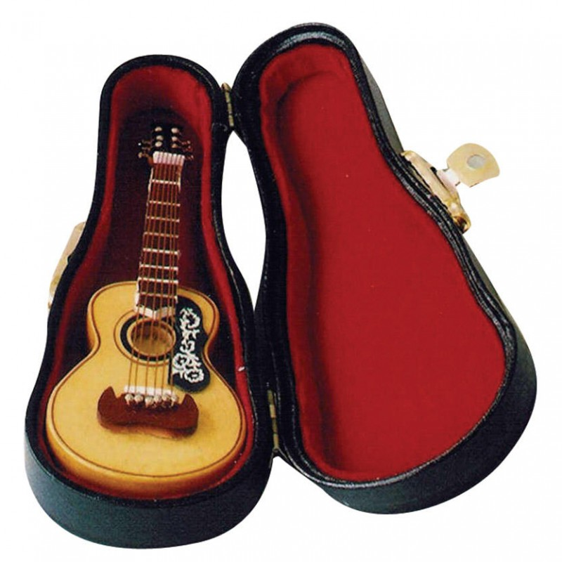 Acoustic Guitar in Case
