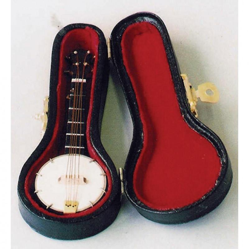 Banjo in Case