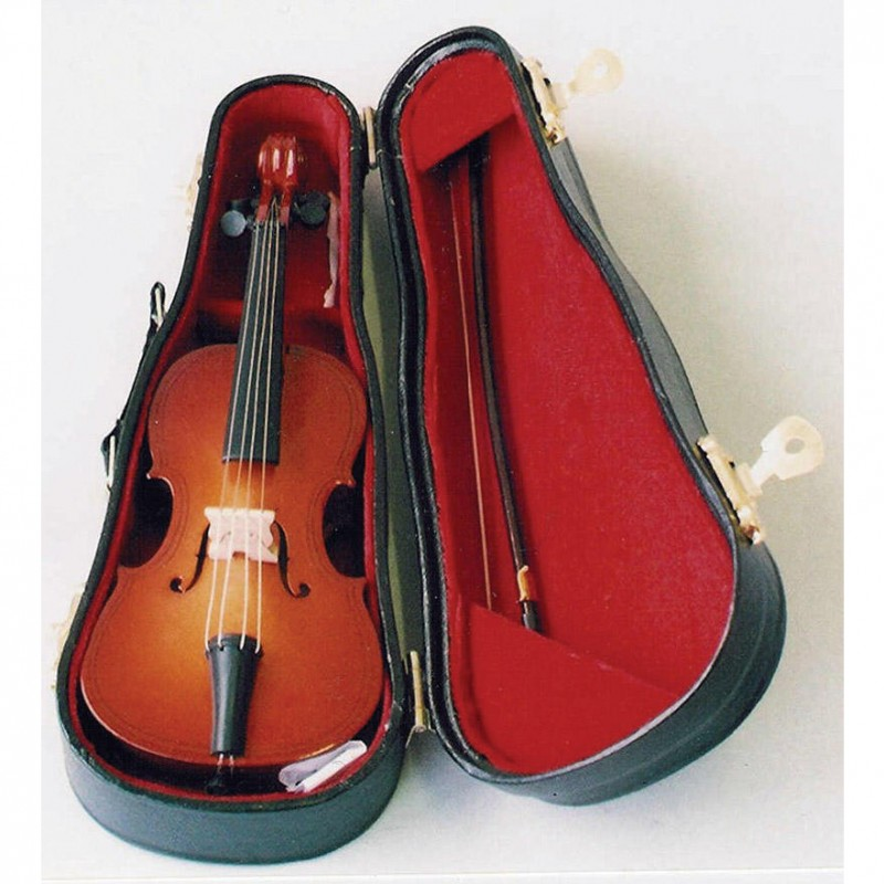 Double Bass in Case