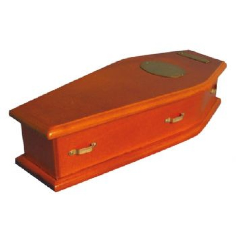 Lined Coffin