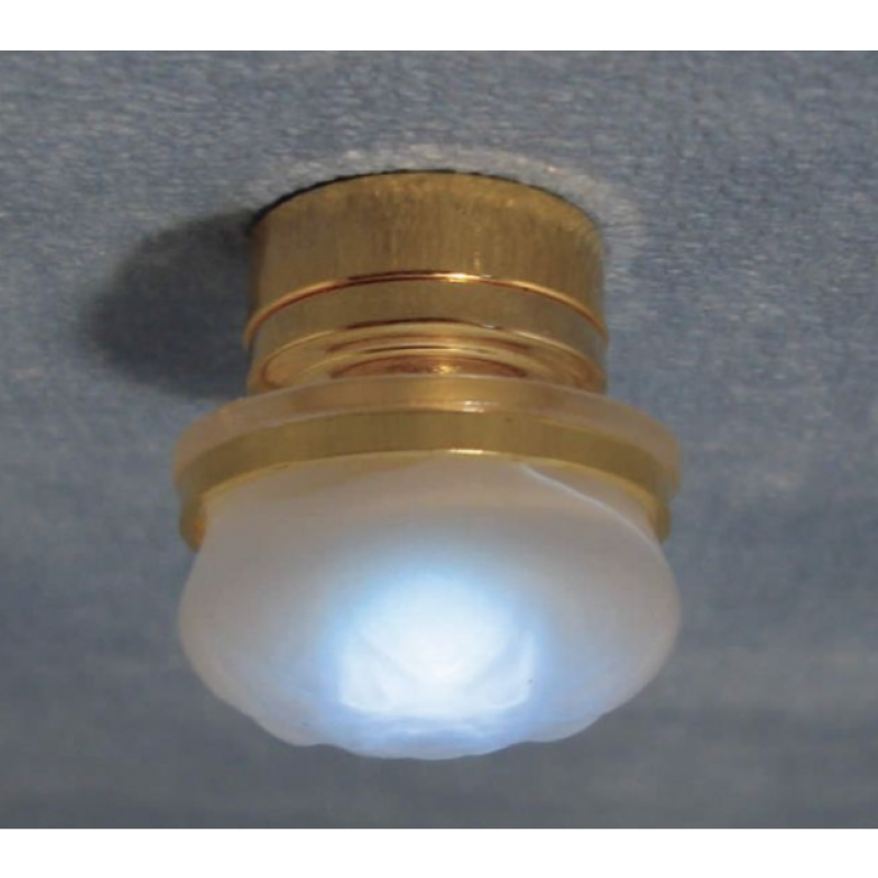 Frosted Ceiling Light LED