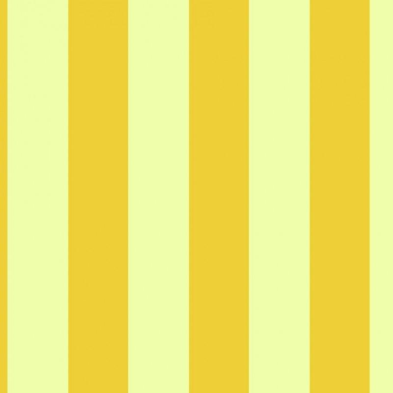 Small Interiors Wide Stripe Yellow